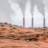 地球環境を救う塩害高耐性植物は農業革命で世界を変えるか?