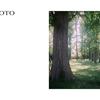 #東京散歩 / Minolta AUTOCORDと歩く東京葛飾 水元公園編