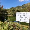 新池(和歌山県紀の川)