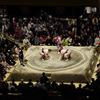 スージョと大相撲の話