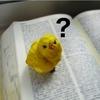 英語が苦手だったのをどう克服したか