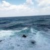満月🌕大潮🌊結果は散々🦑