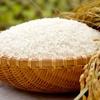安いお米と高いお米の違い~食は人を豊かにする