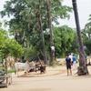 バガン観光2日目はポッパ山に移動。移動中に物乞いを何人も見ました。【2016年7月ミャンマー旅行記18】
