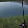 Ultimate Fishing Simulator をプレイしてみました!