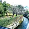 春の小川散策 〜 中野区立哲学堂公園 〜