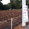 「日本一のいも掘り広場」にて芋掘りを大いに楽しむ