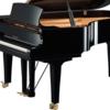 【推測】なぜ、東大生の大半の習い事経験でピアノが上位なのか?