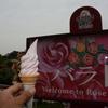 梅雨入りの2014/06/02 グリーンパークのバラ祭りに行って来ました!!