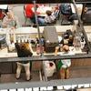 #39 市場規範と社会規範を知り、人間関係を円滑にする