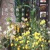 庭づくり本:タネや株分けで育てる花づくり