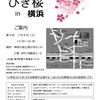 第9回ひきこもり当事者グループ「ひき桜」in横浜のご案内