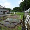 川口市 道合~安行領根岸の湧水と寺社 見沼代用水に沿って
