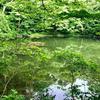 ひょうたん池(新潟県佐渡)