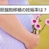 31歳、胚盤胞5BBを移植!【妊娠率は?移植当日の様子は?】妊活日記⑥