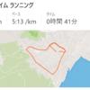 4日分。自重トレx1、RUN 8kmx1