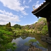 🌸桜と新緑の新宿御苑 その②🍃