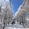 【スキー場】ゲレンデレポまとめ★北海道・東北・中部・中国【スノーボード】