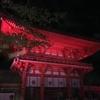 光る下鴨神社を見た