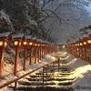インスタ映えSNS映えする京都の貴船神社のライトアップ!女ひとり旅、積雪日限定ライトアップ、水占い、縁結び、アクセス方法について教えます。