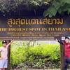 チェンマイ半日観光〜タイで一番高い場所。