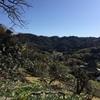 千葉県、富山登山