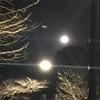 蟹座の満月と宇宙