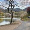 中池(岡山県浅口)