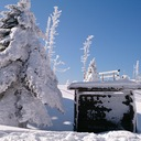 奈良岳志会の山行記録