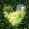 愛に関する不都合な真実