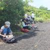 12年生 大島自然観察