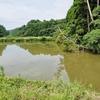 荒篭堰(千葉県いすみ)