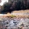 癒しの音楽♪オリジナルピアノ曲「川のせせらぎ」~秋川渓谷