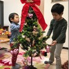 Let's decorate the Christmas tree!(幼児クラス)