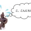 【特集】初めての仏像拝観