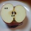 クイズ 林檎の果実ってどこの部分? を考える