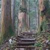 世界遺産「紀伊山地の霊場と参詣道」ってすごいんですよ!