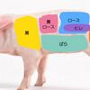 肉の部位はどう使い分けるの?切り落とし肉とこま肉はどう違うの(豚肉編)