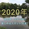 埼玉県のタナゴ釣りを楽しめるスポット10選 2020年