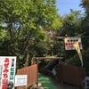 上田の松茸小屋