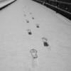 PENTAX K-1にED24-70!4️⃣ さて雪が積もったらこっちのものだ!大地の鼓動を全身で感じるのだ。