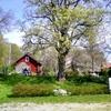 【モデルハウス】憧れのデンマークハウスに行ってきました。