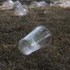 紙製ボトルからはじまるプラスチックスマート関連銘柄は