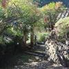 中岡慎太郎ゆかりの史跡「松林寺山門」