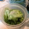 あっという間に金曜日!!彩り楽しいコブサラダを作ってみた☆