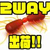 【レイドジャパン 】サイトフィッシングにおすすめのワーム「2WAY」出荷!