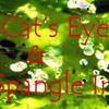 ペリドットキャッツアイ&サンスパングルインクルージョンインペリドット:Peridot Cat's Eye & SunSpangle In Peridot