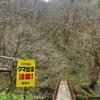 ◆'20/04/12    経ヶ蔵山③…相沢川の橋~山頂