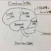 【Courseraで神経科学を学ぶ(2)】脳の構造を側面から、底面から、断面から細かく見てみよう!