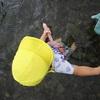 夏の定番!!羽地大川で水遊び
